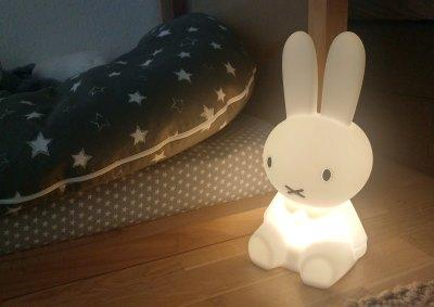 Mr Maria Miffy Test