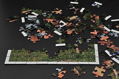 500 Teile Puzzle Testsieger (1)