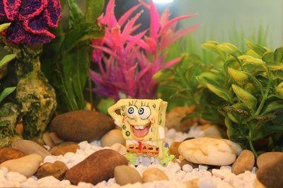 Spongebob Geschenke fuer Kinder