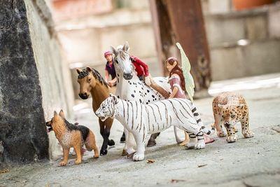 Tiere Spielzeug Testbericht (1)