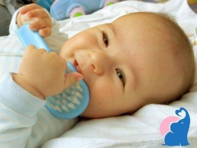 Baby Haarbuerste Testsieger