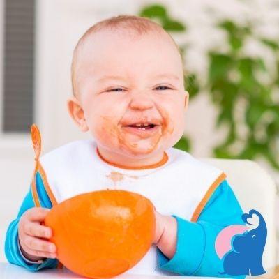 Babynahrungszubereiter Testbericht (1)